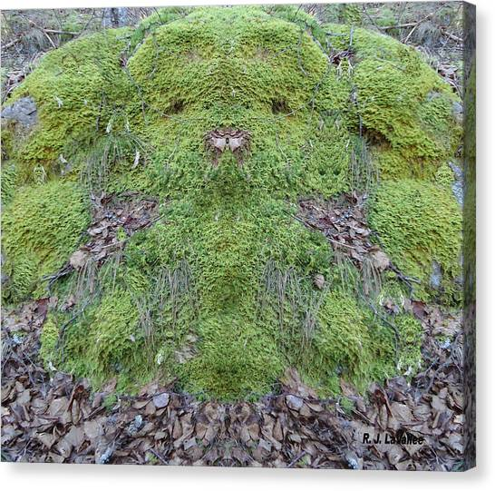 Search For The Mossman Canvas Print