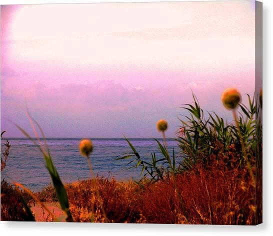 Seascape Cyprus Canvas Print