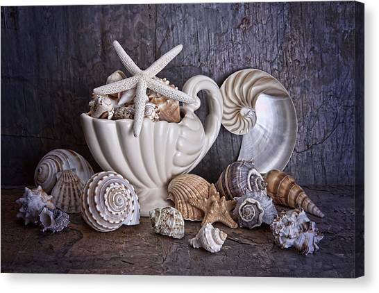 Starfish Canvas Print - Seashells by Tom Mc Nemar
