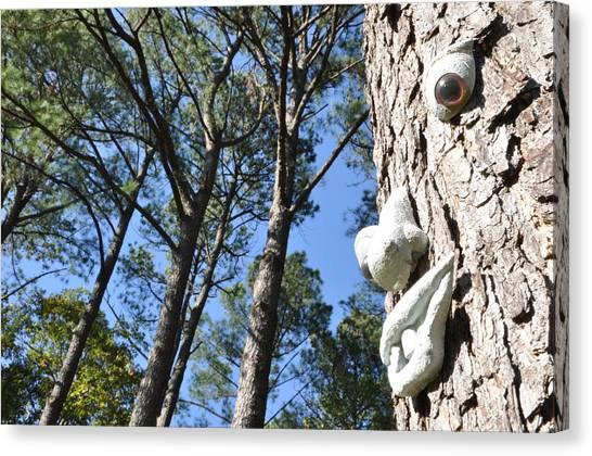 See Da Tree Canvas Print