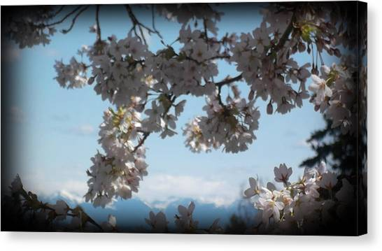 See The Cascades Canvas Print by Lee Yang