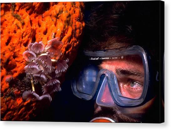 Self Portrait On Snowfields Reef Canvas Print
