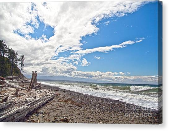 Sequim Beach Canvas Print by Molly Heng
