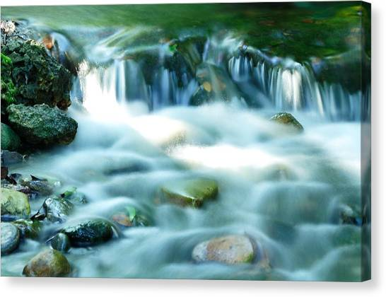Serenity Canvas Print by Andres LaBrada