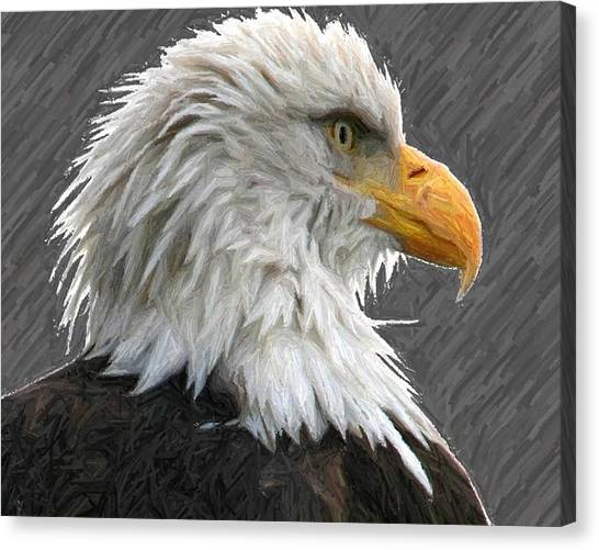 Serious Eagle Canvas Print by Carrie OBrien Sibley