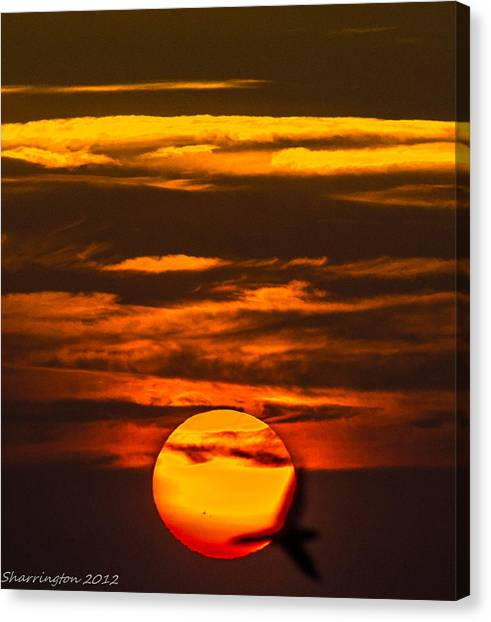 Setting Sun Flyby Canvas Print
