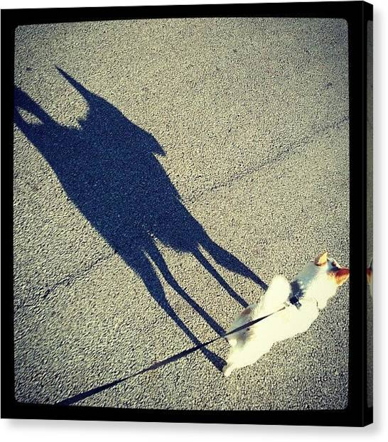 Dogs Canvas Print - #shadow #puppy #dog #abstract by Mandy Shupp