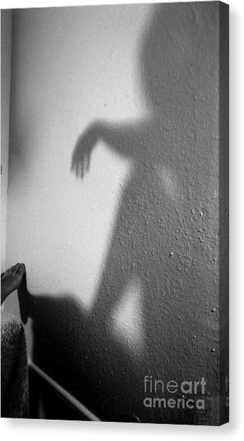 Shadow Canvas Print