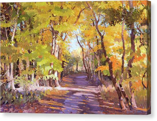 Shady Path At Fall In The Woods Canvas Print