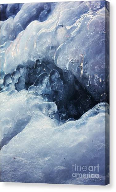 Shanow13 Canvas Print