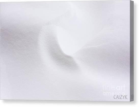 Shanow5 Canvas Print