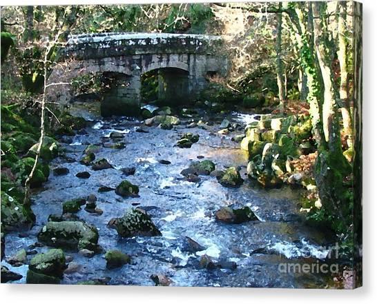 Shaugh Prior Bridge Canvas Print by Ron Telford