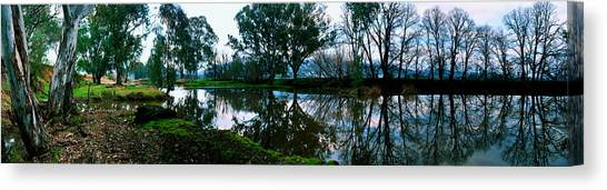 Shelley Creek Canvas Print