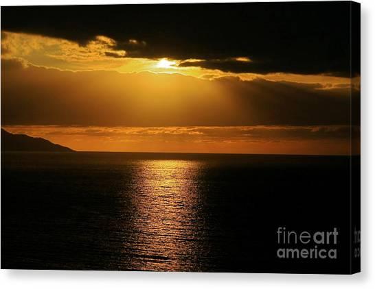 Shining Gold Canvas Print
