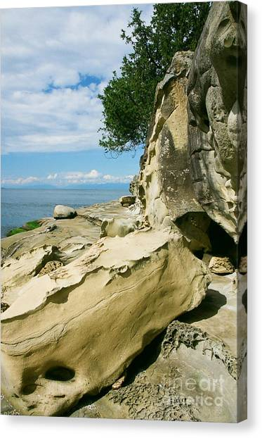 Shoreline Sculpture Canvas Print by Frank Townsley