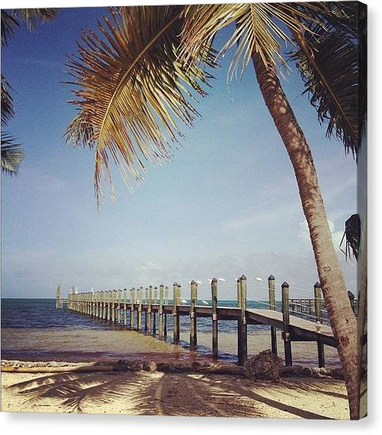 Tropical Birds Canvas Print - Short Walk Down A Long Dock by Michele Green Williams