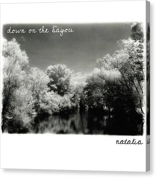 Swamps Canvas Print - #shot On A #trip To #neworleans by Natalia D