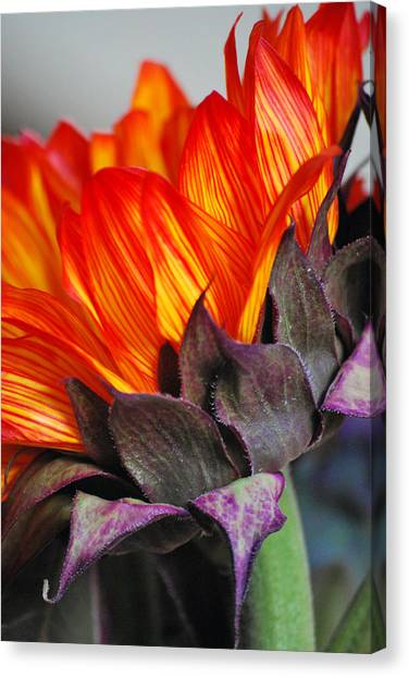 Side Of Beauty Canvas Print