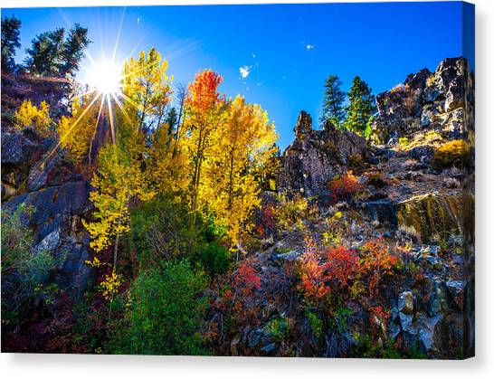 Sierra Nevada Fall Colors Lassen County California Canvas Print by Scott McGuire