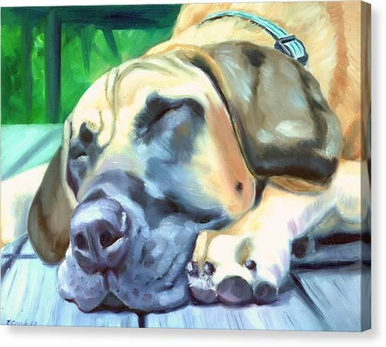 Great Danes Canvas Print - Siesta - Great Dane by Lyn Cook