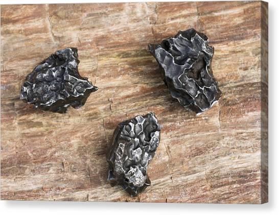 Sikhote-alin Meteorite Fragments Canvas Print by Dirk Wiersma