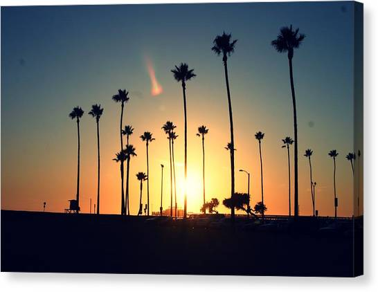 Palm Trees Sunsets Canvas Print - Silhouette Of Palm Trees At Sunset by Photo by Natalie Wilson