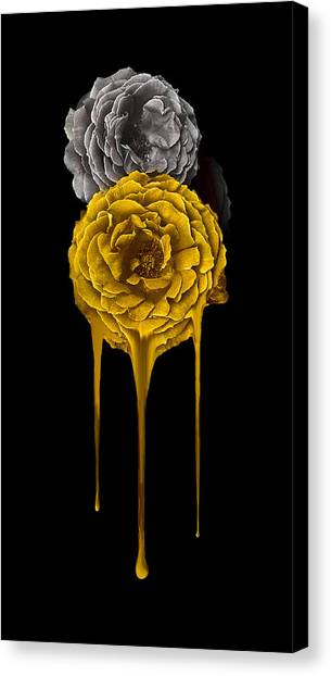 Silver And Gold Canvas Print