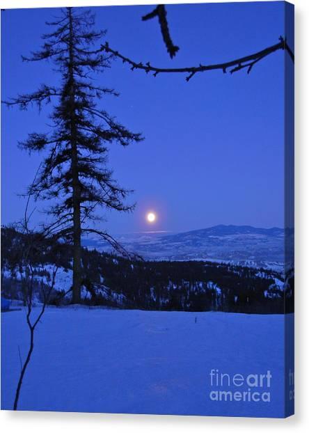 Silver-blue Moon Canvas Print