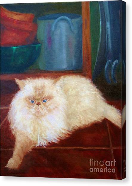 Himalayan Cats Canvas Print - Simon by Osborne Lorlinda