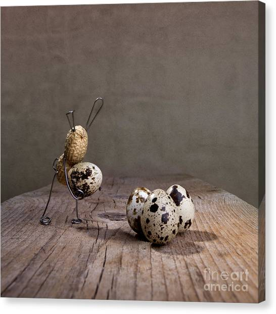 Easter Eggs Canvas Print - Simple Things Easter 03 by Nailia Schwarz