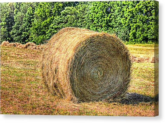 Single Bale Canvas Print by Barry Jones