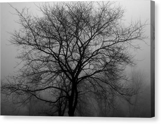 Skeletons In The Fog Canvas Print