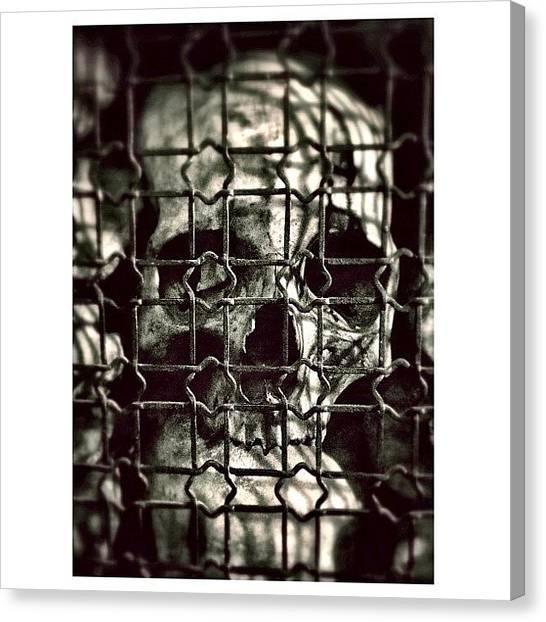 Skulls Canvas Print - Skull by Ale Romiti 🇮🇹📷👣