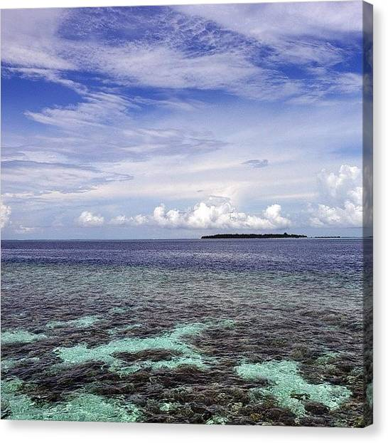 Reef Sharks Canvas Print - #sky #clouds #sea #ocean #lagoon #reef by Mohamed Shafy
