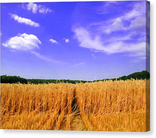 Sky Over The Field 3 Ae  Canvas Print by Lyle Crump