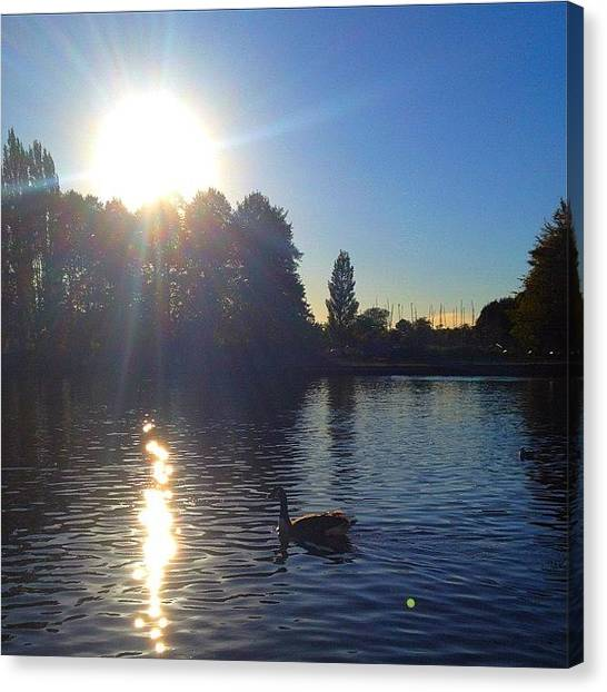 Geese Canvas Print - #sky #river #riverthames #goose by Andy Brett