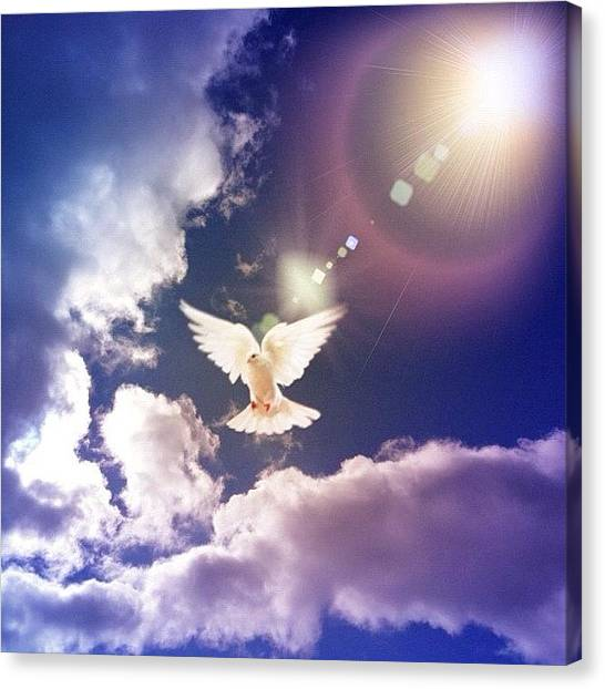 Dove Canvas Print - #sky #skyporn #clouds #cloudporn by Tanya B