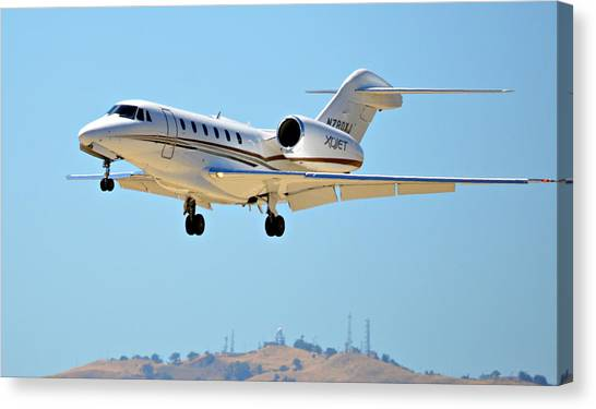 Cessnas Canvas Print - Sleek Aviator by Fraida Gutovich