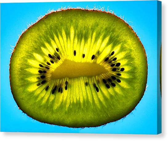 Slice Of Divine Green Kiwi Fruit Canvas Print
