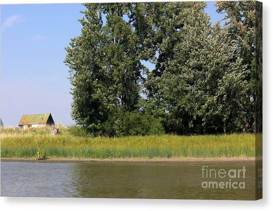 Small Barn Big Trees Canvas Print by Sophie Vigneault