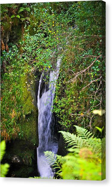 Small Waterfall Canvas Print by Erica McLellan