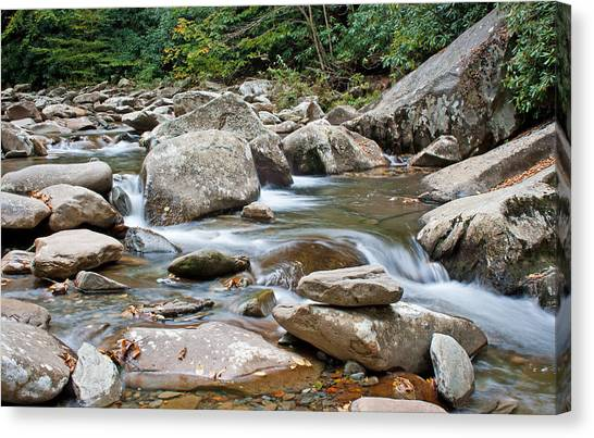 Smoky Mountain Streams Canvas Print