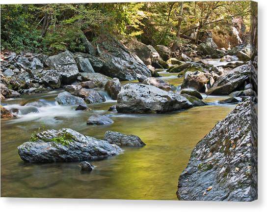 Smoky Mountain Streams II Canvas Print