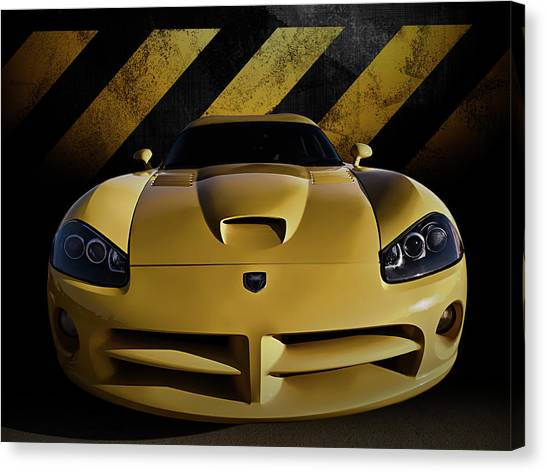 Vipers Canvas Print - Snake Crossing by Douglas Pittman