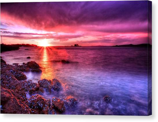 Snapper Island Sunset Canvas Print