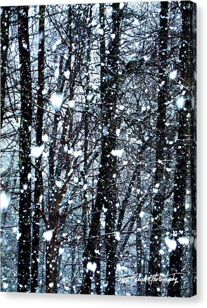 Snoball Flakes Canvas Print by Ruth Bodycott