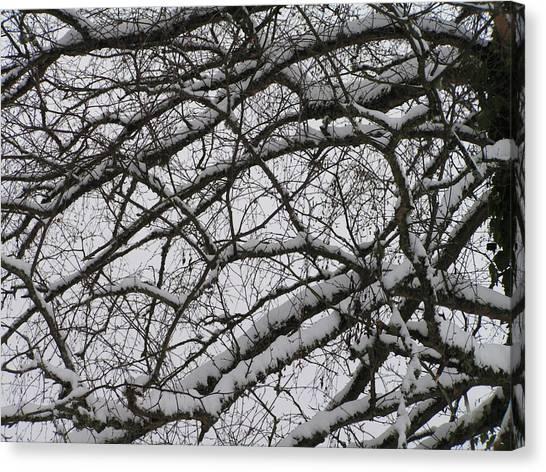 Snow Against A Grey Sky Canvas Print