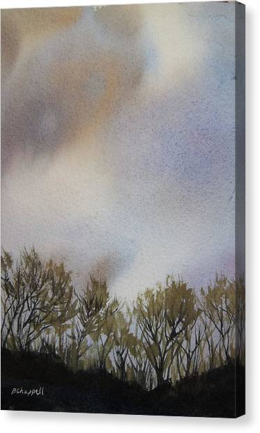 Snow Coming Canvas Print