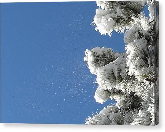 Snow Flakes Against A Blue Sky Canvas Print