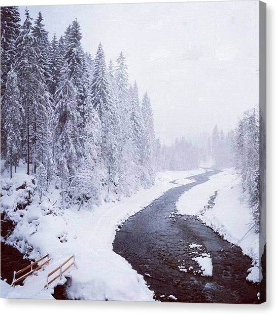 White Canvas Print - Snow Landscape - Trees And River by Matthias Hauser